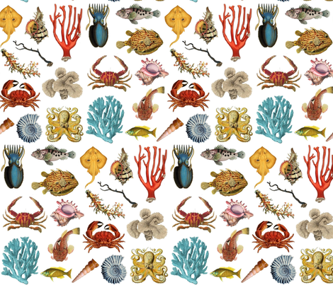 coral reef fabric by stofftoy on Spoonflower - custom fabric