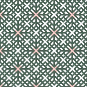 Spring Lattice Geometric '17