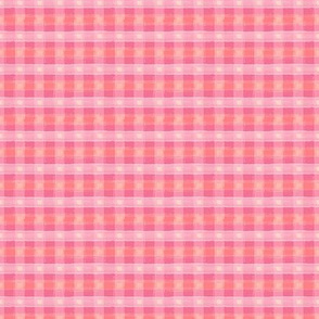 Watercolor Pink Plaid XXS
