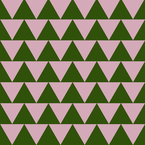 pink triangle or is it green
