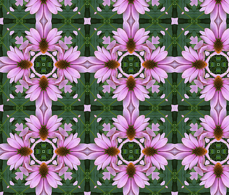 Coneflower Echinacea   Abstract fabric by linda_baysinger_peck on Spoonflower - custom fabric