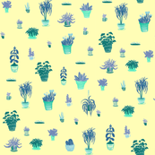 Yellow and Blue plants