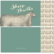 Rsheep_thrills-sheep2-01_shop_thumb