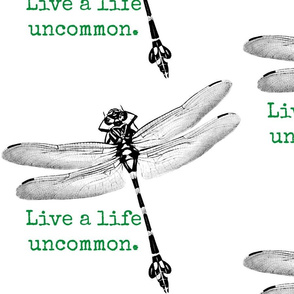 Life Uncommon Dragonfly