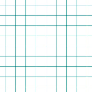 teal windowpane grid 2 square check graph paper