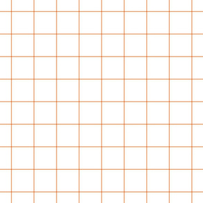 "tangerine windowpane grid 2"" square check graph paper"