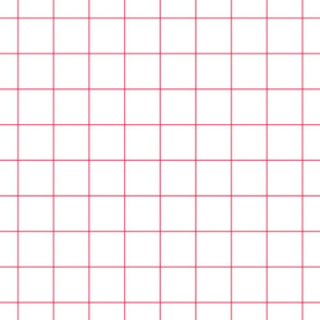 hot pink windowpane grid 2""