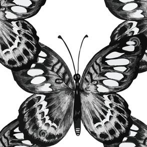 Giant B&W Butterfly Trellis