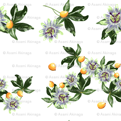 Rrpassionfruit_small_preview