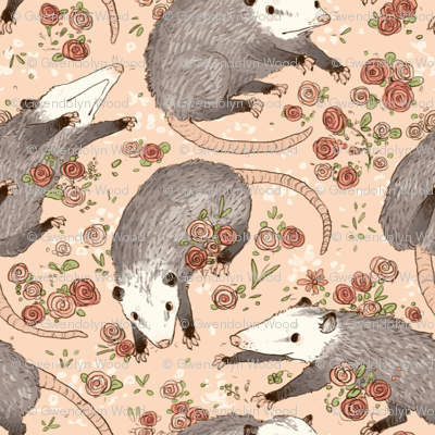 Opossums and Roses