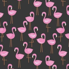 Flamingo Gorgeous Midnight