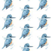 kingfisher watercolor pattern