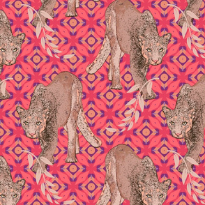 Mountain Lion in Coral and Pink