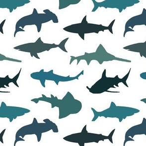 Sharks - Teal Shades // Small