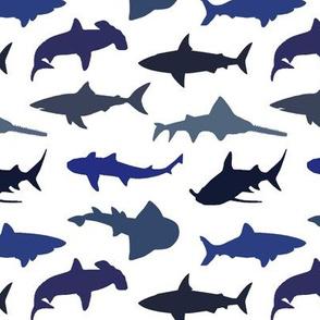 Sharks - Blue Shades // Small