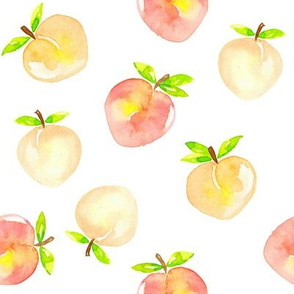 Peaches watercolour on white