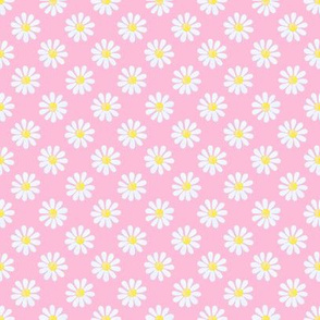 Daisy_watercolour_pale_blue_on_pink