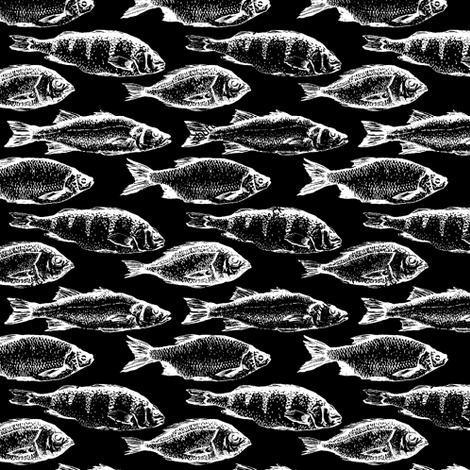 Fish Sketches on Black // Small fabric by thinlinetextiles on Spoonflower - custom fabric