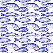 Rrblue_fish_shop_thumb