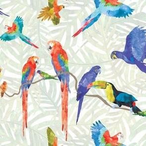 Rainforest Birds - Light