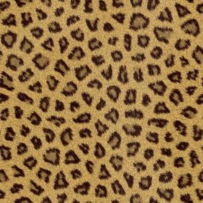 Realistic Leopard Animal Print Fur Texture