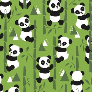 Min mountain panda