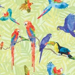 Rainforest Birds - Light Green