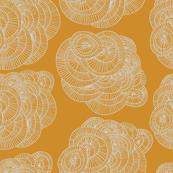 concentric-circles-orange