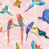 Rainforestbirds_02-06_shop_thumb