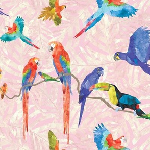 Rainforest Birds - Pink