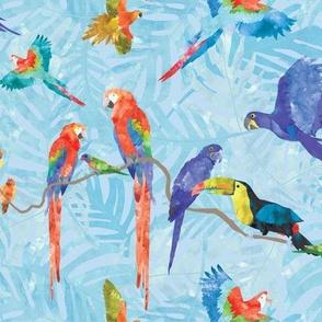 Rainforest Birds - Blue
