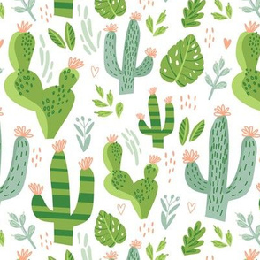 Cacti Mix 2 - White
