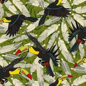 toucan jungle half size