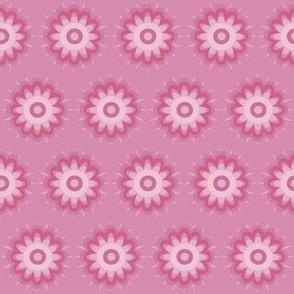 pink mini daisy