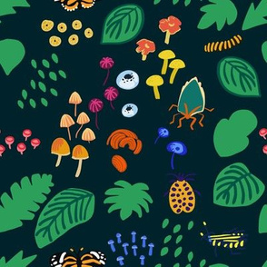 Rainforest Fungus and Bugs
