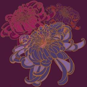 Vibrant Chrysanthemums