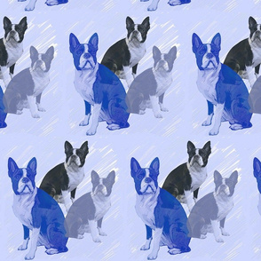 boston_terrier_stencils