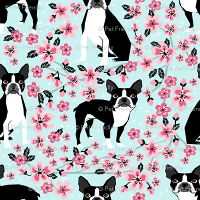 Boston Terrier Cherry Blossom Spring Florals Dog Breed