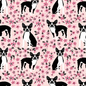 Boston Terrier cherry blossom spring florals dog breed patterned fabric pink