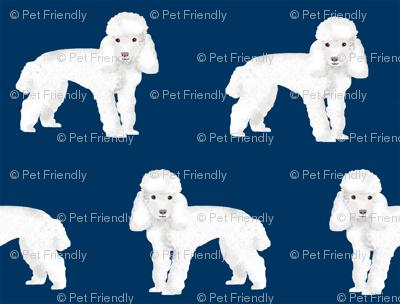 Toy Poodle dog pattern dog fabric  navy