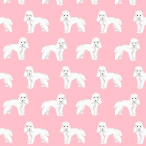 Toy Poodle dog pattern dog fabric  pink