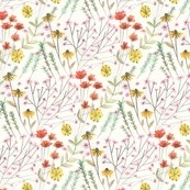 Wildflowerswatch_shop_thumb
