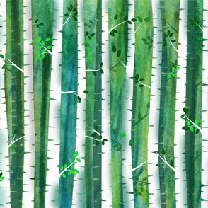 Birch forest 21x18