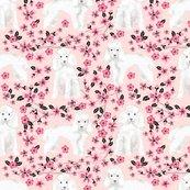 Rtoy_poodle_cherry_blossom_p_shop_thumb