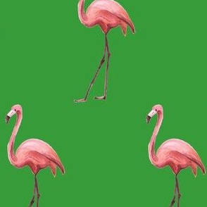 Flamingo Park - Green