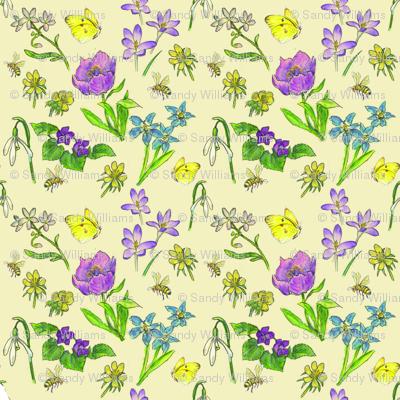 Spring_wildflowers