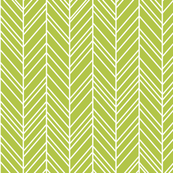 herringbone feathers lime green