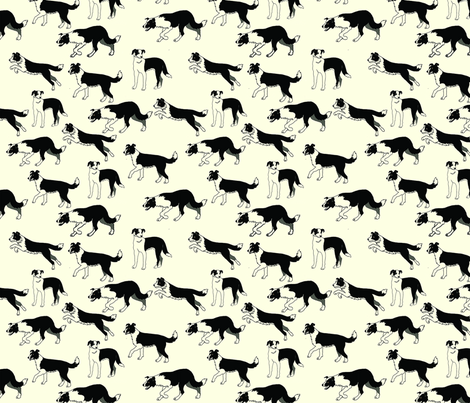 Border_Collies fabric by sandy_at_sound_of_wings on Spoonflower - custom fabric
