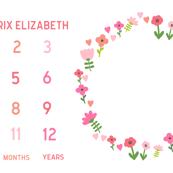 milestone blanket baby girl sweet florals