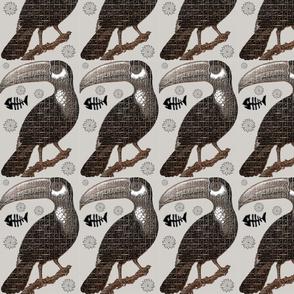 Dessicated Mountain Toucan